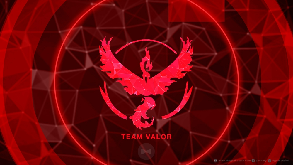 WP Team Valor NEW